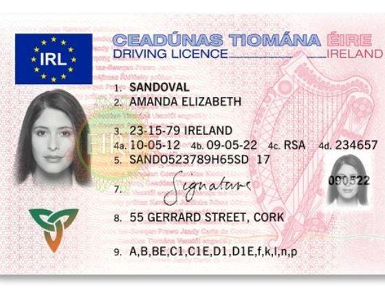 IRISH DRIVER'S LICENSE